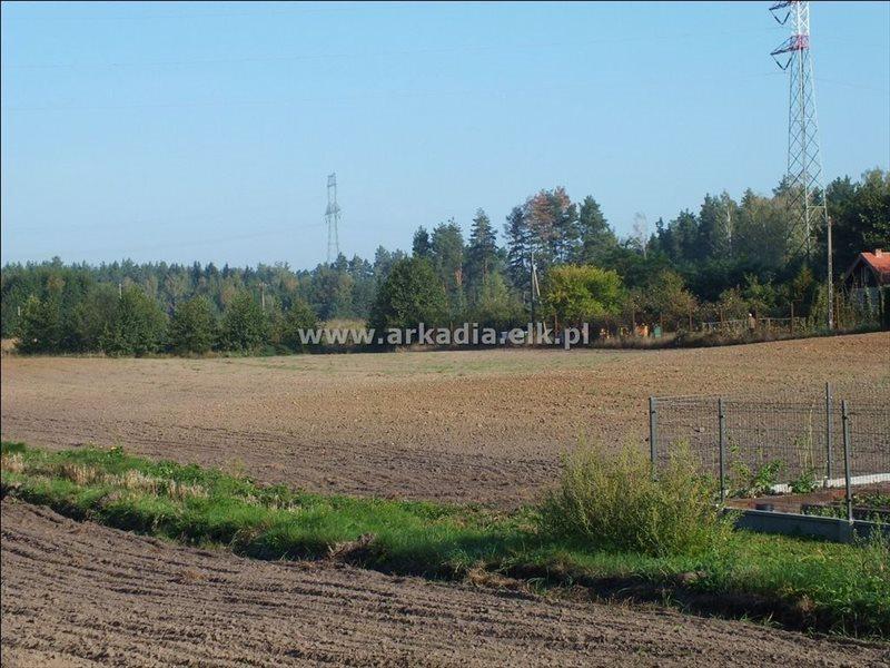 Działka budowlana na sprzedaż Buczki  1040m2 Foto 2