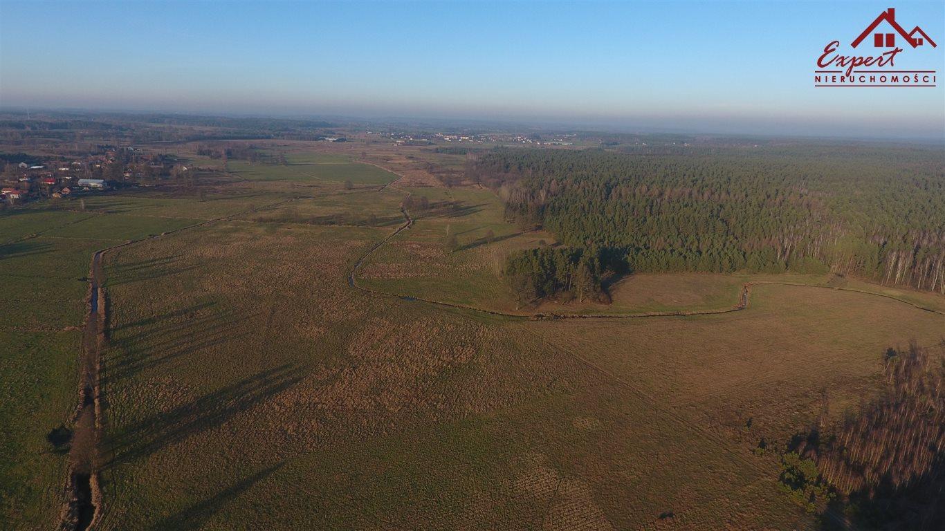 Działka rolna na sprzedaż Wynki  21700m2 Foto 4