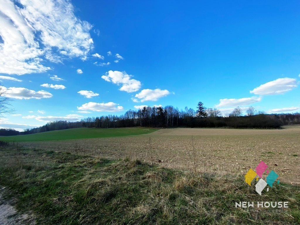 Działka rolna na sprzedaż Jagodziny  216500m2 Foto 4