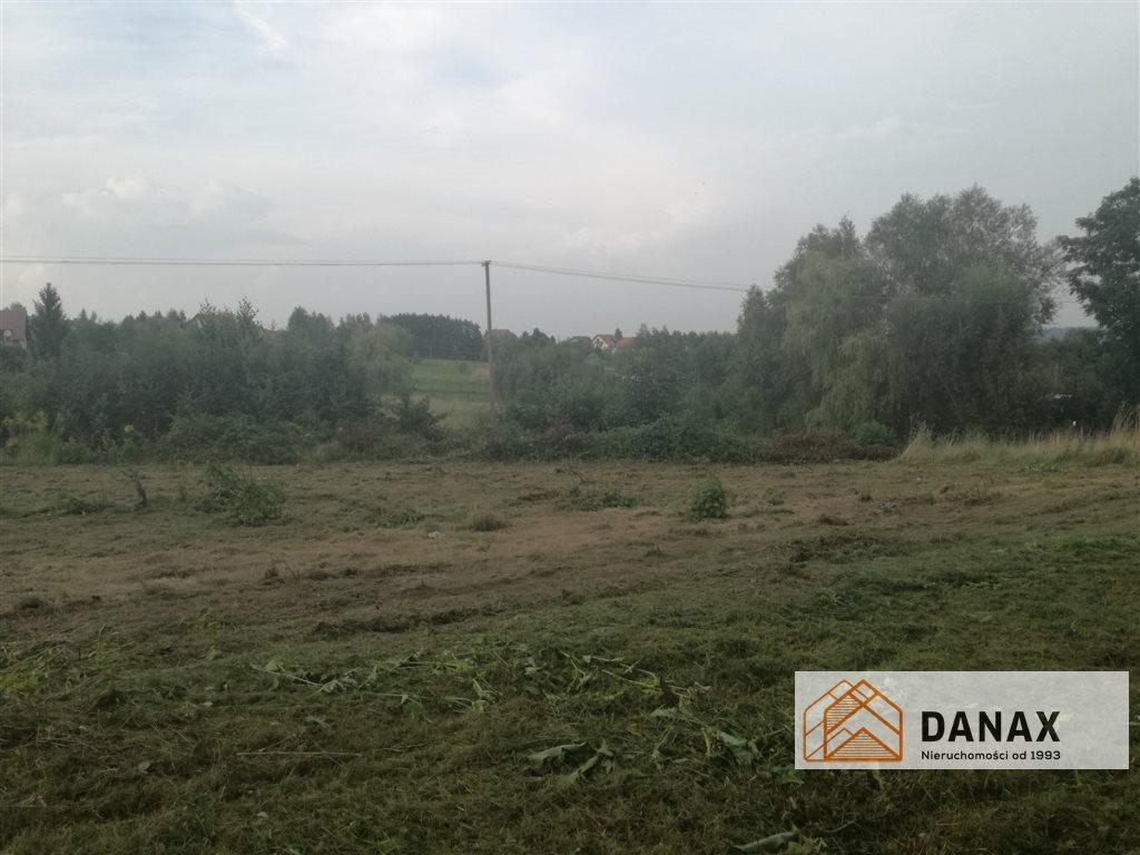 Działka budowlana na sprzedaż Janowice  1000m2 Foto 5