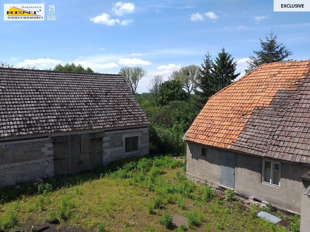 Działka budowlana na sprzedaż Klępino  8900m2 Foto 6