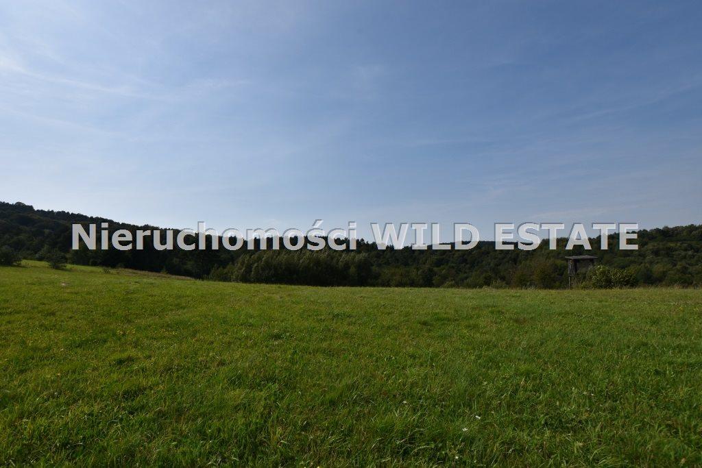 Działka rolna na sprzedaż Baligród, Zahoczewie  180184m2 Foto 5