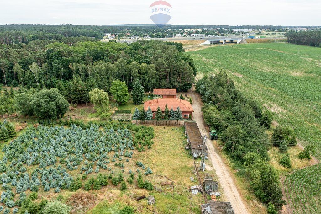 Działka przemysłowo-handlowa na sprzedaż Złotkowo, Pasieka  36300m2 Foto 8