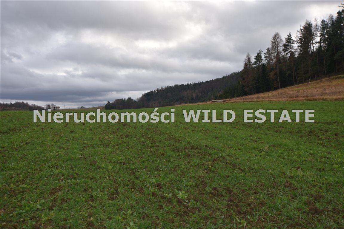 Działka rolna na sprzedaż Solina, Berezka  9520m2 Foto 5