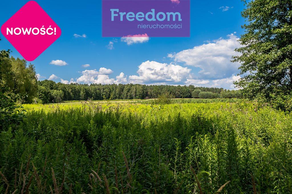 Działka leśna na sprzedaż Zielonka  38097m2 Foto 9