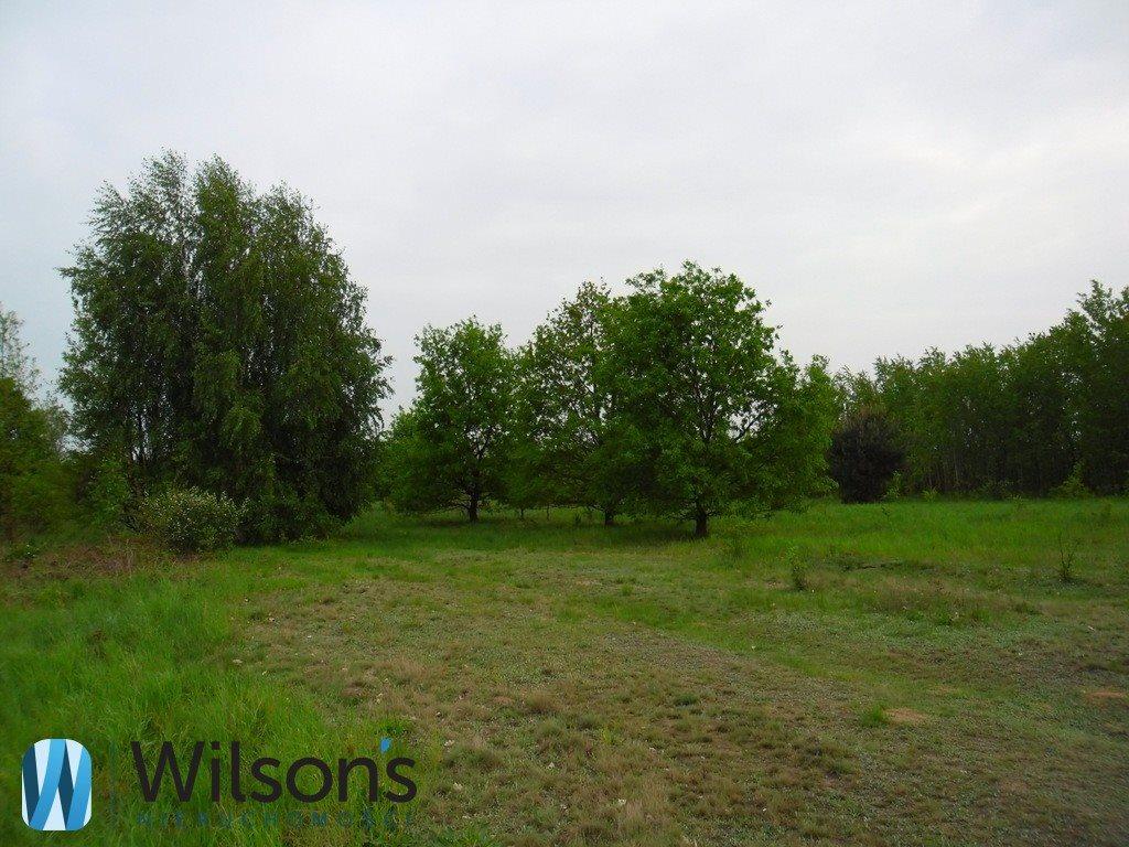 Działka rolna na sprzedaż Radom, Formierska  6000m2 Foto 3