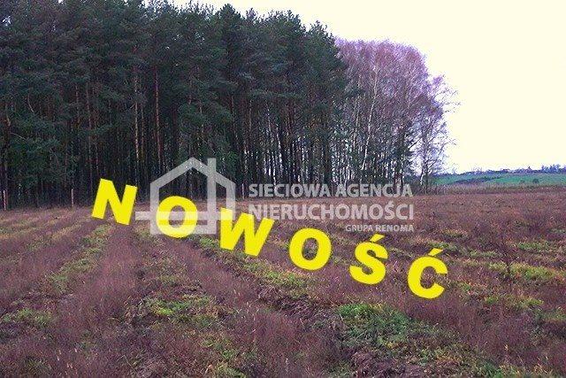 Działka leśna na sprzedaż Strzeczona  129577m2 Foto 1