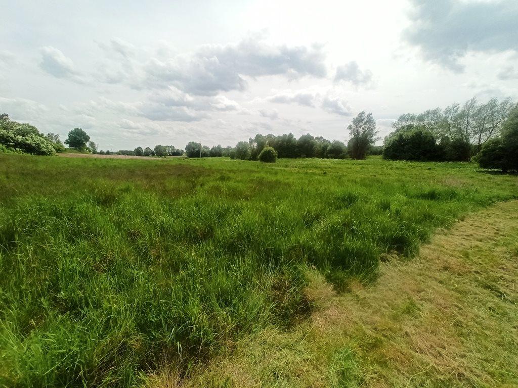 Działka rolna na sprzedaż Nowe Marzy  7800m2 Foto 2