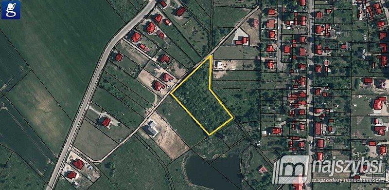 Działka rolna na sprzedaż Chojna, Lotnisko  7032m2 Foto 2