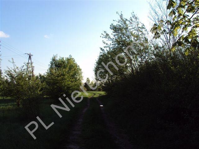 Działka rolna na sprzedaż Osuchów  27100m2 Foto 8