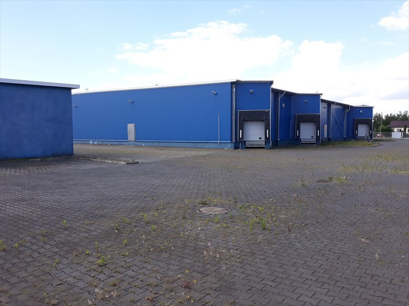 Lokal użytkowy na wynajem Hala - MAGAZYN - produkcja. 3648 m2 - WROCLAW  3648m2 Foto 8