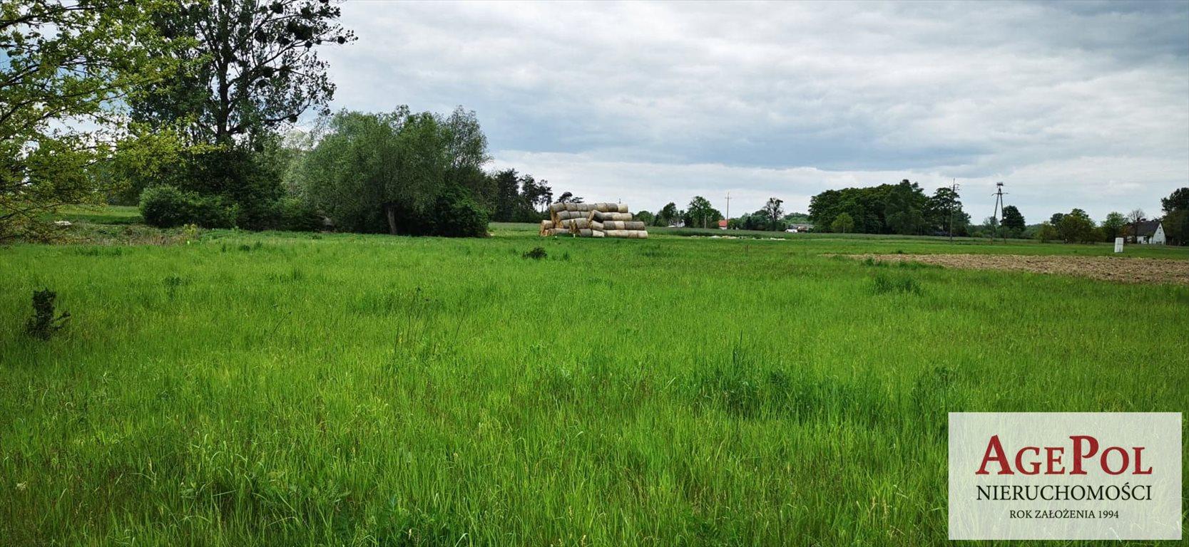 Działka budowlana na sprzedaż Mała Wieś Przy Drodze  2301m2 Foto 9