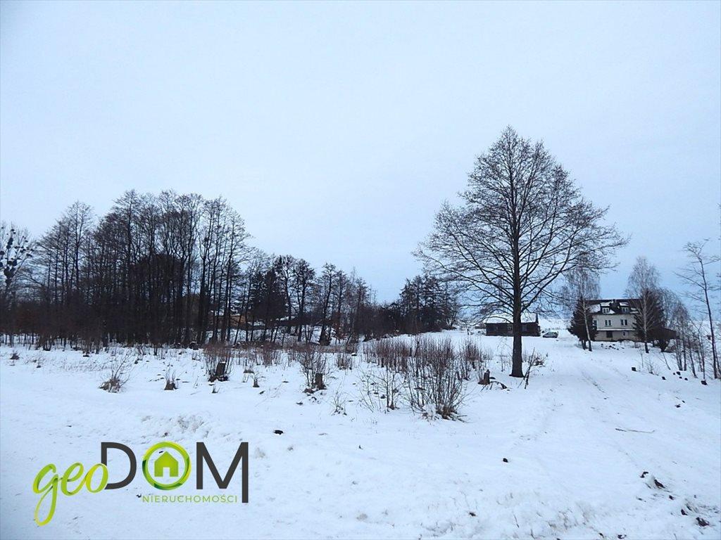 Działka budowlana na sprzedaż Józefin k. Nowosiółek  3100m2 Foto 3