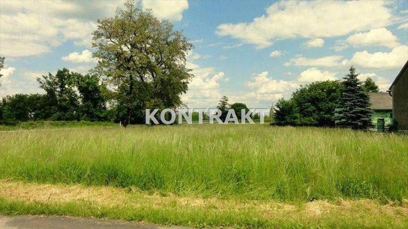 Działka inna na sprzedaż Oświęcim, Broszkowice, Świerkowa  2490m2 Foto 4