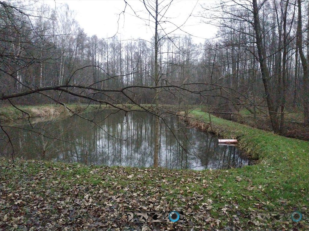 Działka budowlana na sprzedaż Stoczek  30000m2 Foto 10