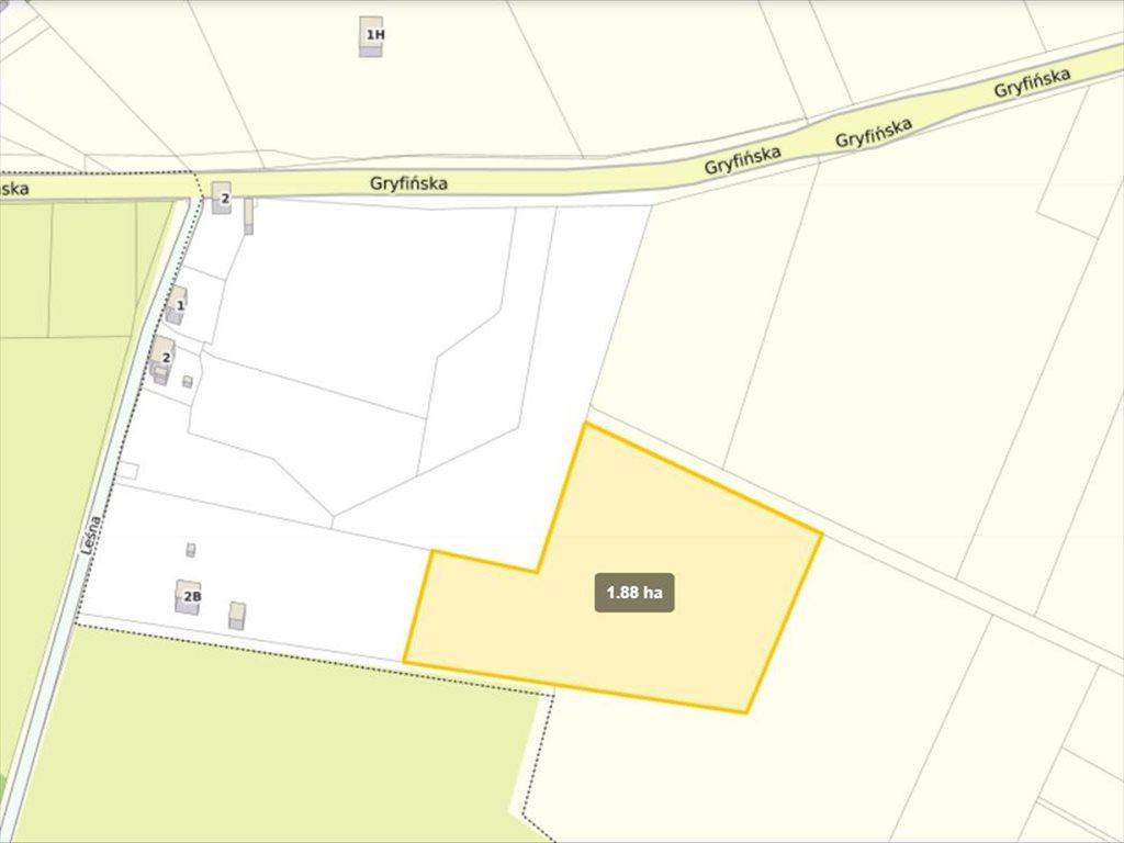 Działka siedliskowa na sprzedaż Wełtyń, Gryfino  18700m2 Foto 6