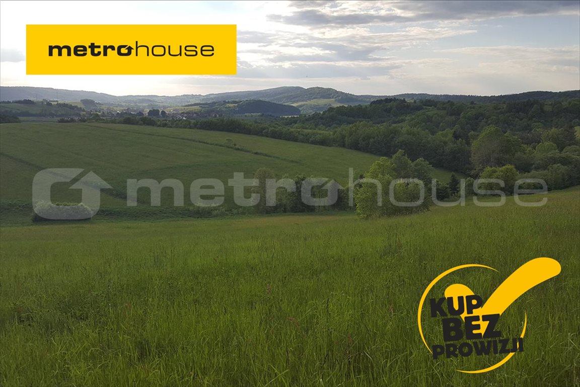 Działka rolna na sprzedaż Średnia Wieś, Lesko  12340m2 Foto 1