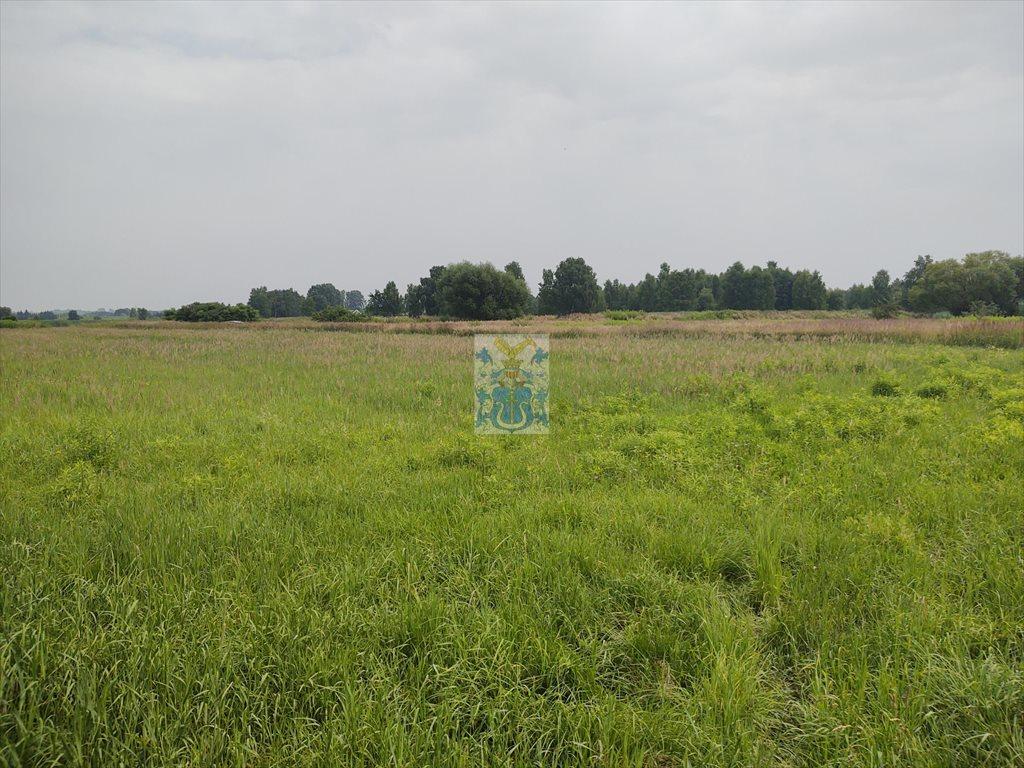 Działka budowlana na sprzedaż Ochodza  5146m2 Foto 1