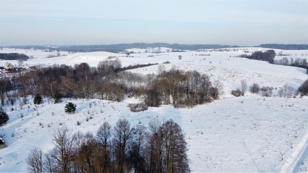 Działka rolna na sprzedaż Piaski  10498m2 Foto 4