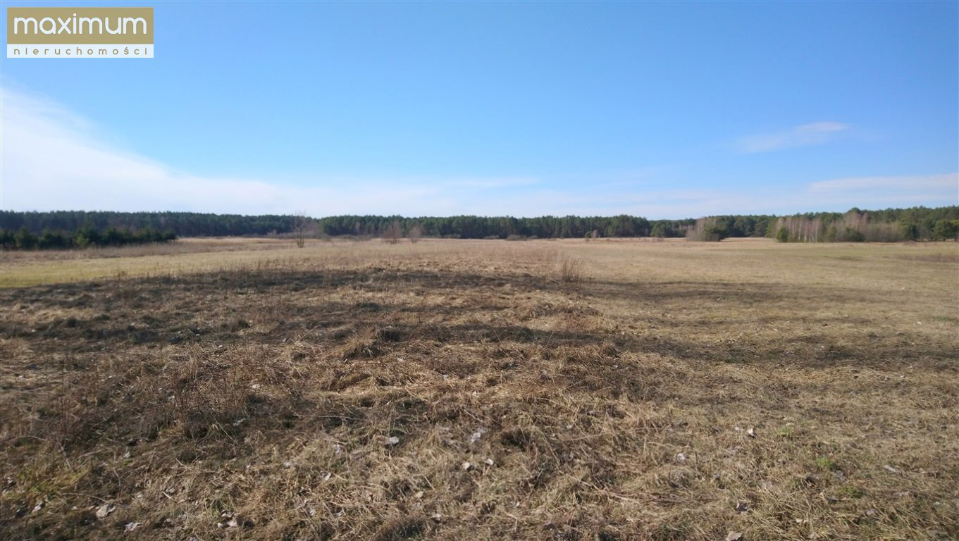 Działka leśna na sprzedaż Tereszpol-Kukiełki  56800m2 Foto 2