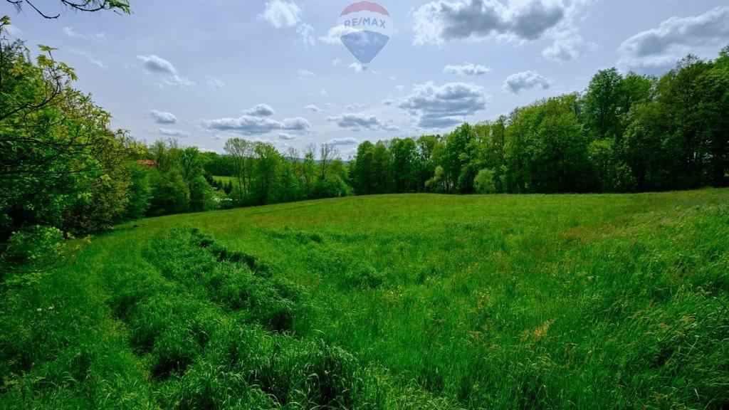 Działka rolna na sprzedaż Mazańcowice  14396m2 Foto 9