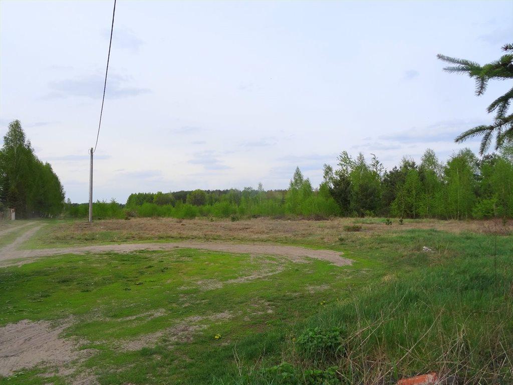 Działka inwestycyjna na sprzedaż Kołaków  23255m2 Foto 10