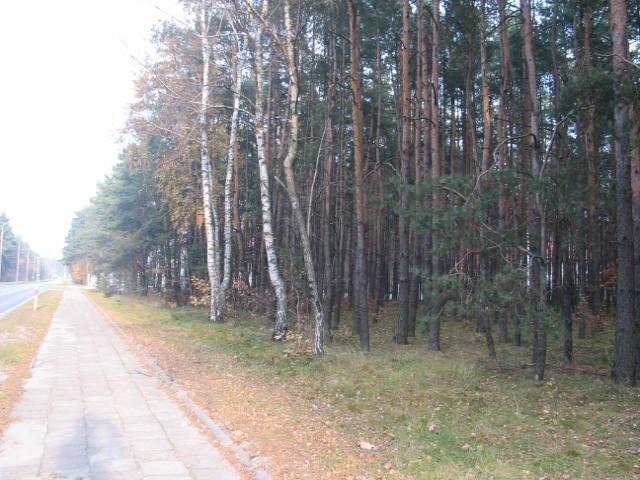 Działka budowlana na sprzedaż Jozefów, Józefów  2144m2 Foto 4