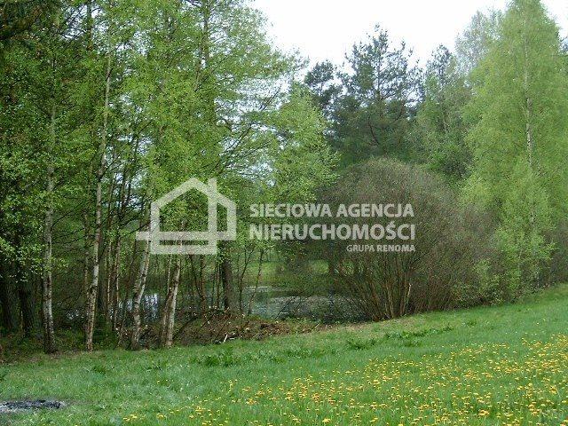 Działka budowlana na sprzedaż Donimierz  4980m2 Foto 5