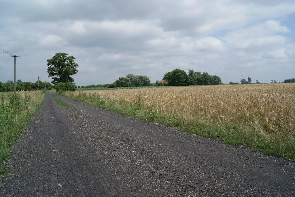 Działka rolna na sprzedaż Szczytno  27900m2 Foto 3