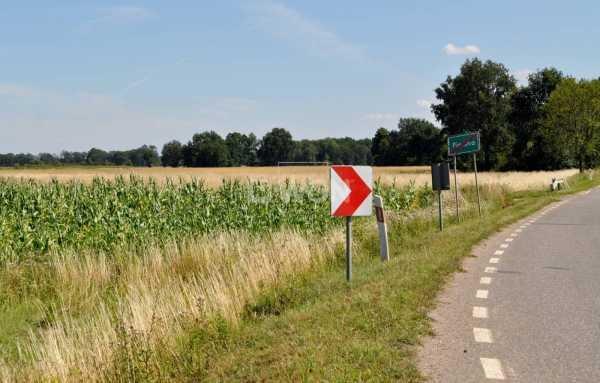 Działka rolna na sprzedaż Piersna, Piersna  8739m2 Foto 2