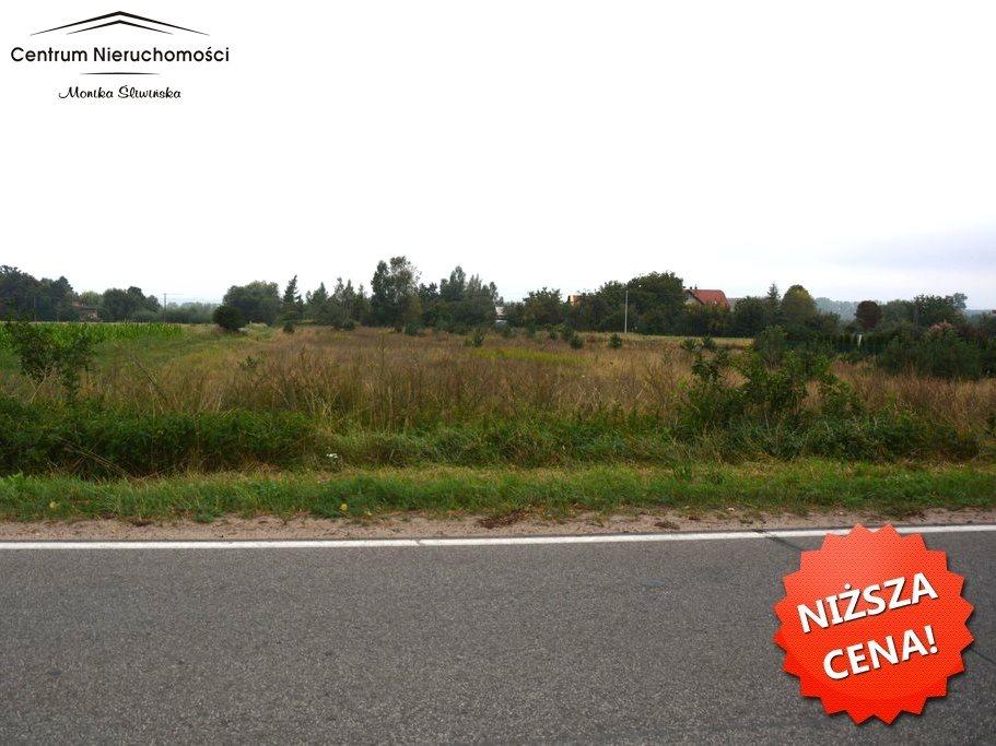 Działka rolna na sprzedaż Wielkie Łunawy  1000m2 Foto 4