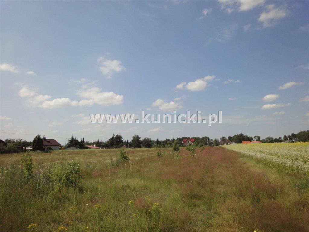 Działka budowlana na sprzedaż Przyborowice Górne  6250m2 Foto 5