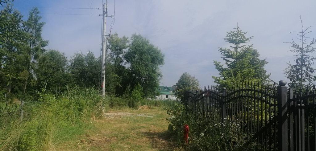 Działka budowlana na sprzedaż Wojcieszyn  1100m2 Foto 5