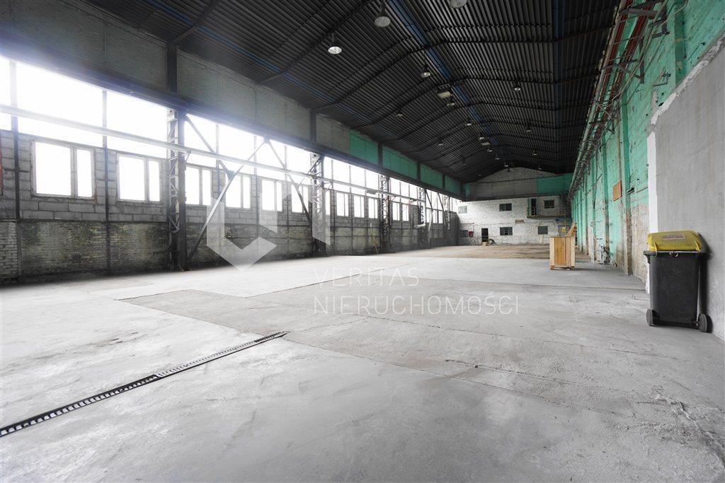 Lokal użytkowy na wynajem Sosnowiec  1240m2 Foto 5
