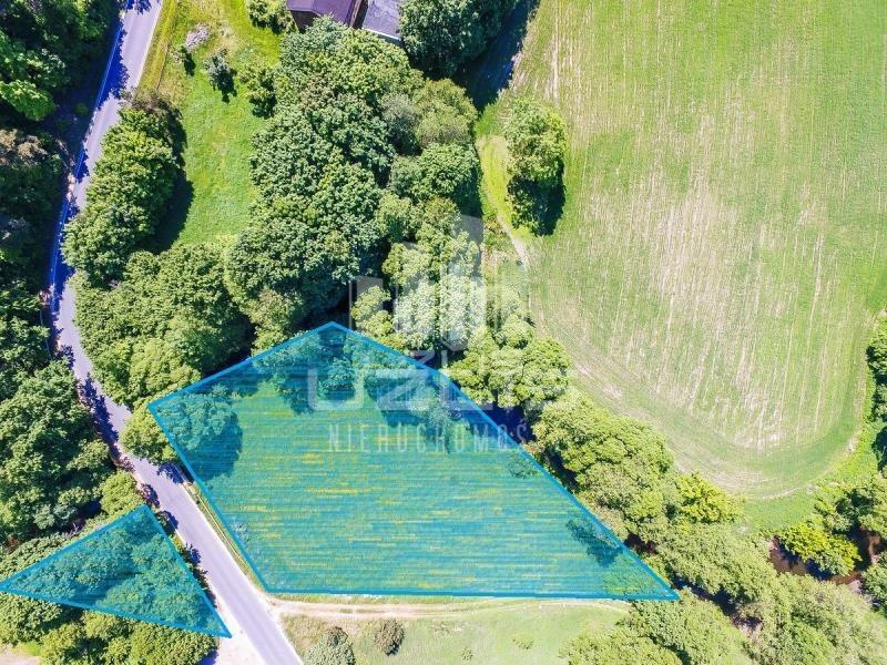 Działka rolna na sprzedaż Czarnocin  1900m2 Foto 6