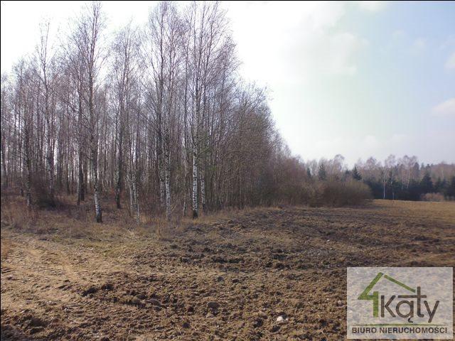 Działka rolna na sprzedaż Czarny Kierz, Czarny Kierz, Czarny Kierz  16500m2 Foto 4