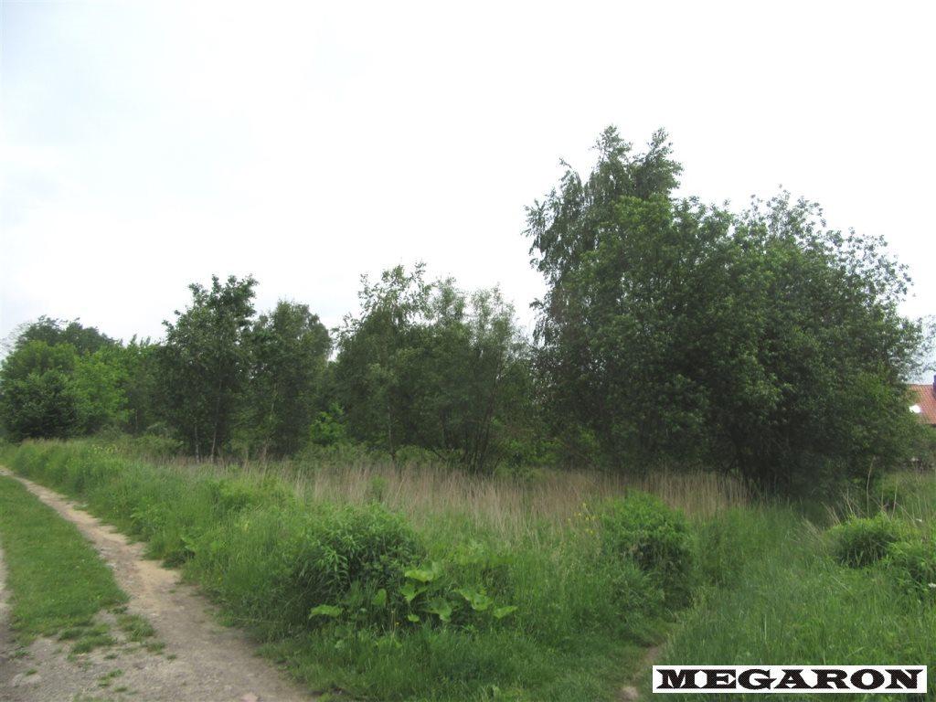 Działka inna na sprzedaż Częstochowa, Raków Zachód  12643m2 Foto 2