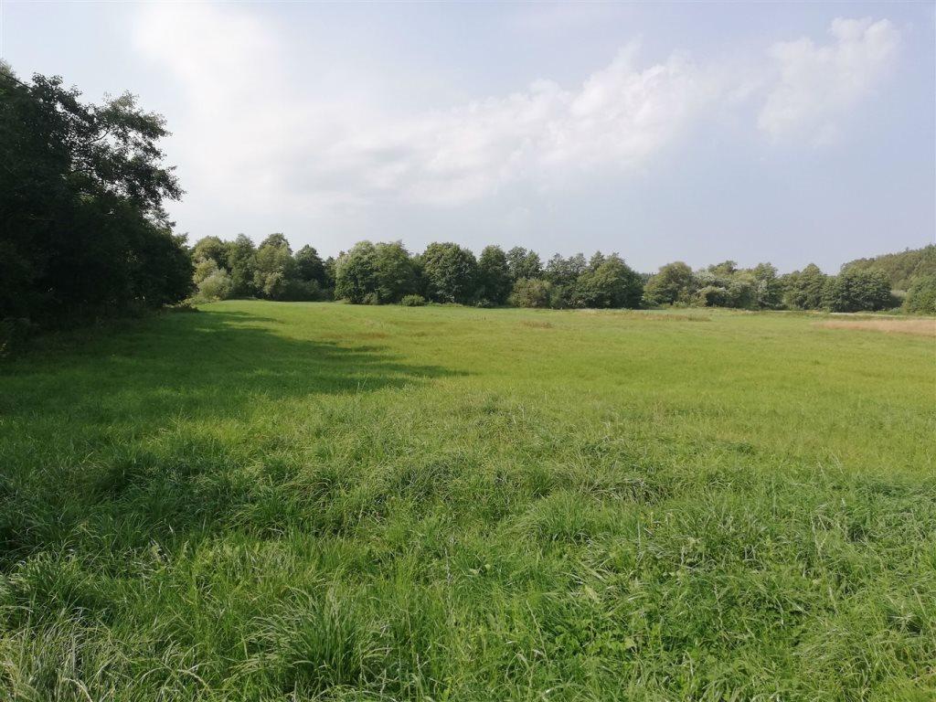 Działka rolna na sprzedaż Luzino, Zgody  12593m2 Foto 2