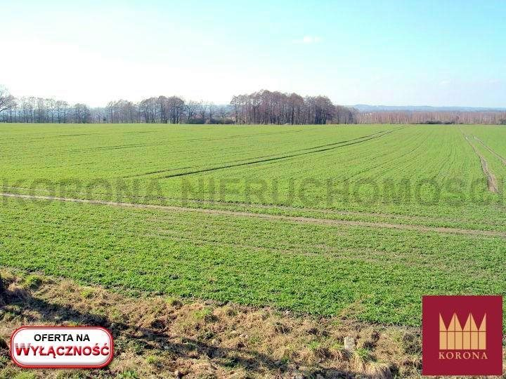 Działka rolna na sprzedaż Adamowice  51000m2 Foto 6