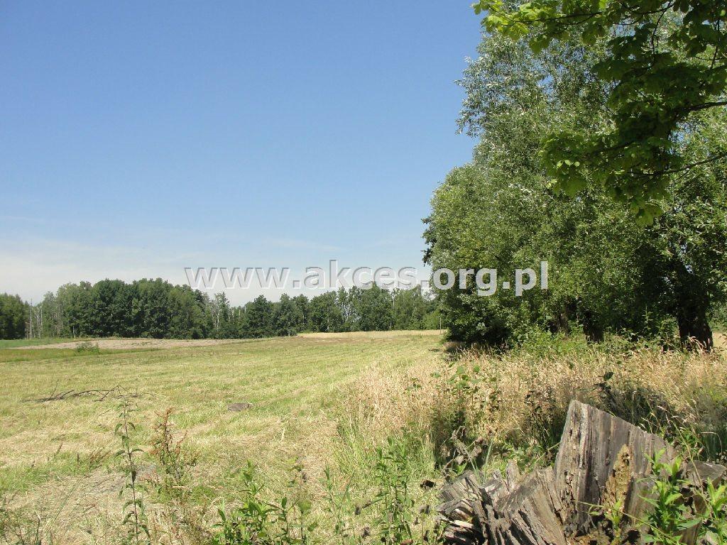 Działka rolna na sprzedaż Żyrów  166700m2 Foto 3