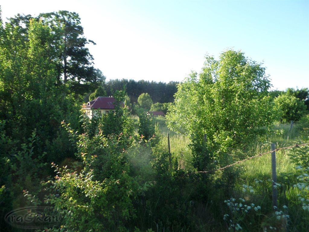 Działka rolna na sprzedaż Stare Kawkowo  3523m2 Foto 3