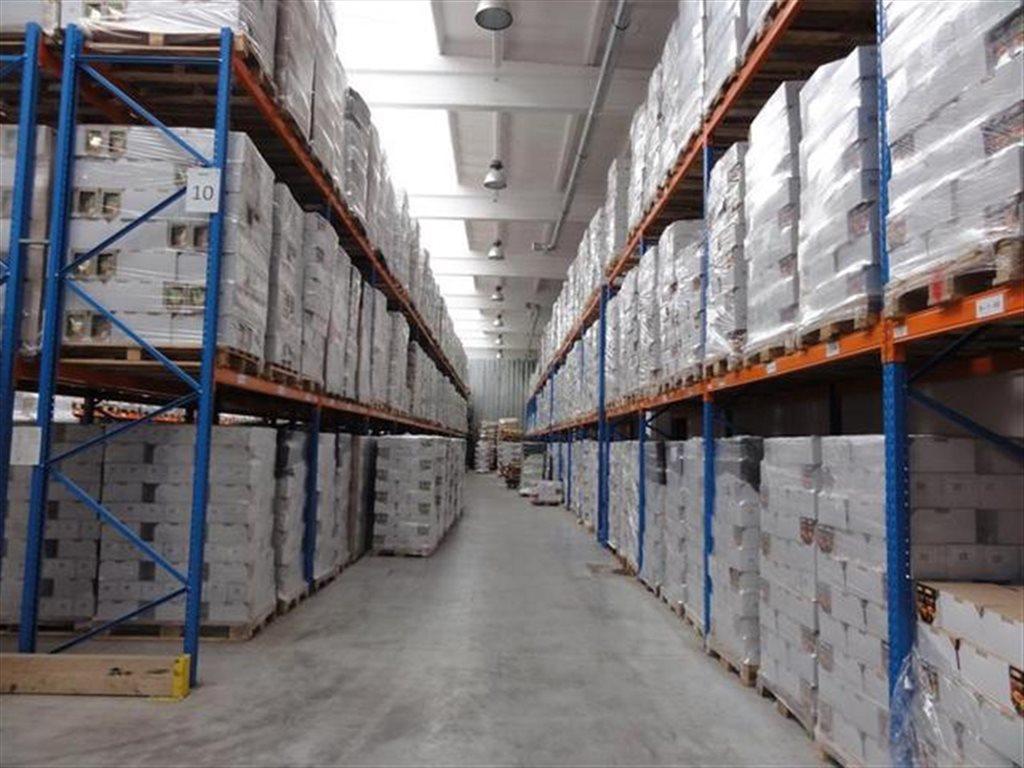 Lokal użytkowy na sprzedaż Ostrówek  4891m2 Foto 12