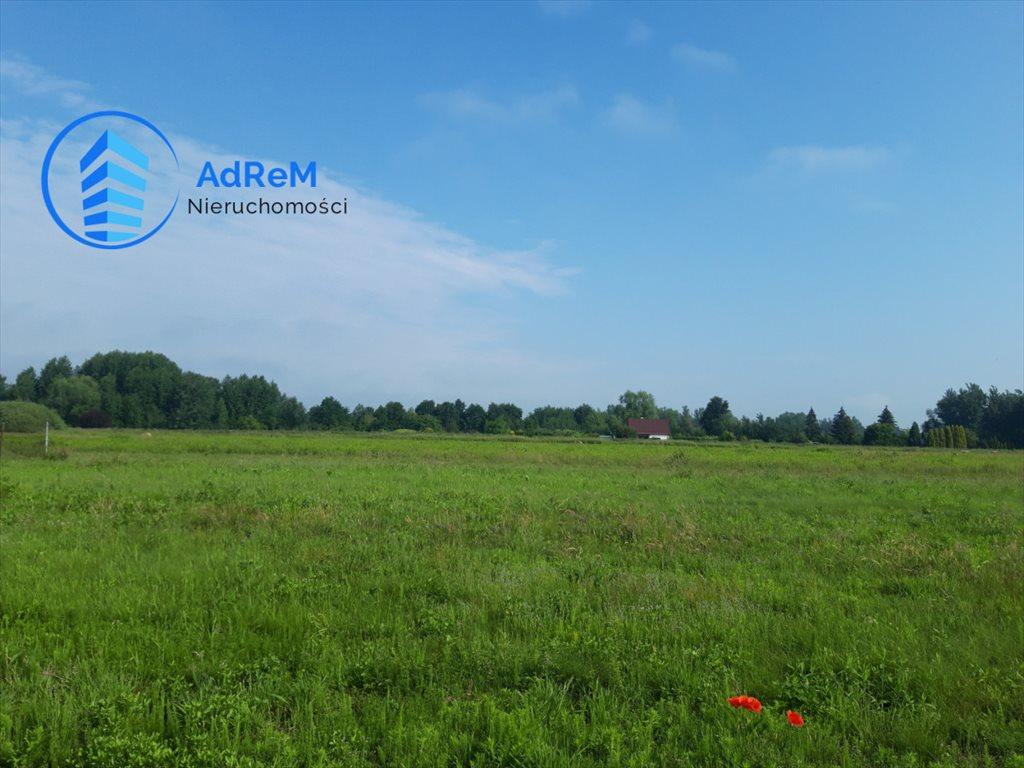 Działka rolna na sprzedaż Cieciszew  3700m2 Foto 1