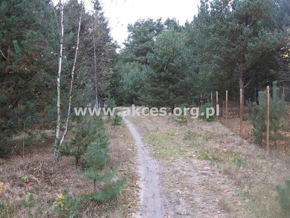 Działka leśna na sprzedaż Kędzierówka  3800m2 Foto 2