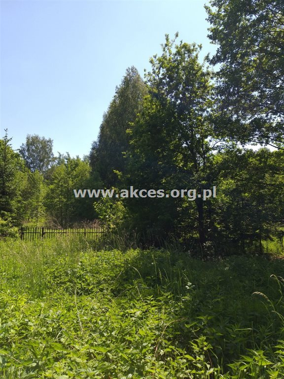 Działka budowlana na sprzedaż Jeziórko  3300m2 Foto 2