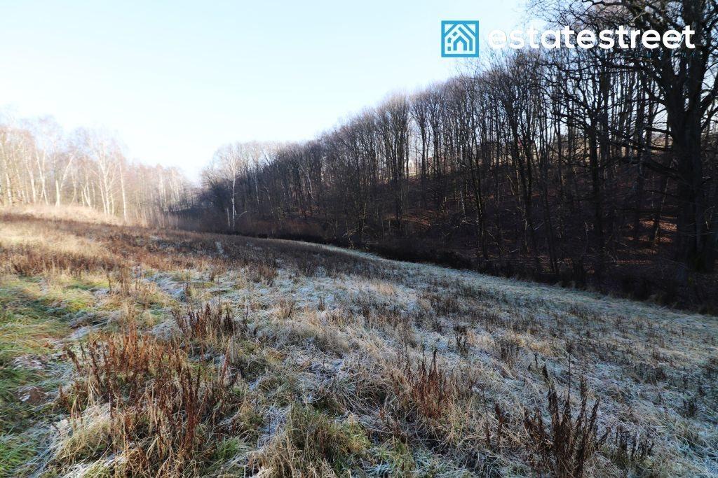 Działka rolna na sprzedaż Kraków, Rajsko, Rajsko, Nad Fosą  1149m2 Foto 1