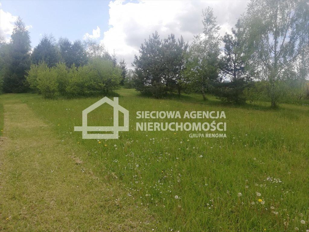 Działka leśna na sprzedaż Żuławka  1730m2 Foto 2