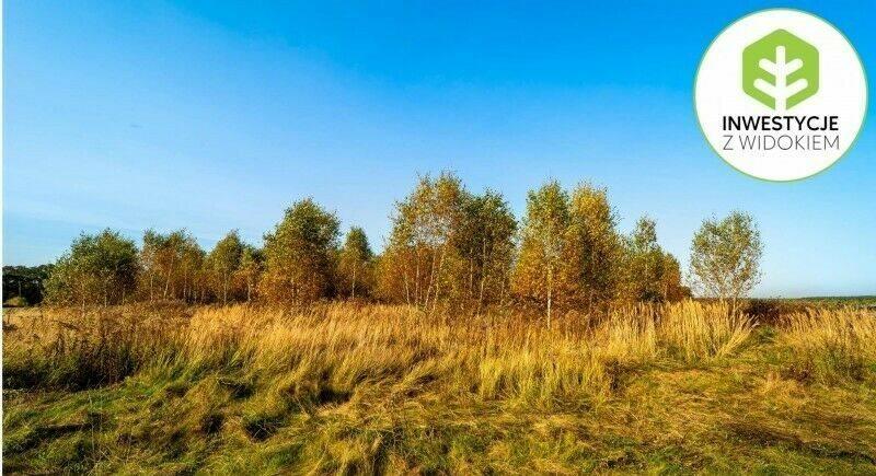 Działka budowlana na sprzedaż Kórnik, Działka sąsiedztwie Rogalińskiego Parku Krajobrazowego  1675m2 Foto 3