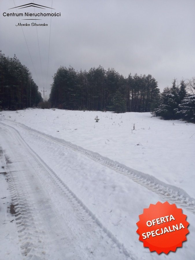 Działka leśna na sprzedaż Zawada  3110m2 Foto 4
