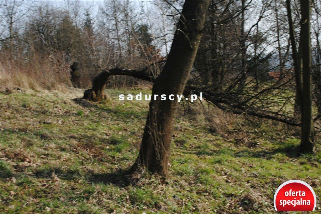 Działka rolna na sprzedaż Kraków, Zwierzyniec, Przegorzały, Kamedulska  2400m2 Foto 12